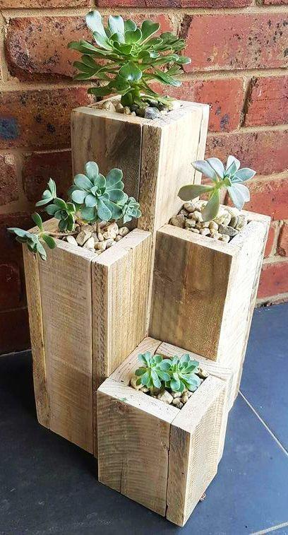 Vaso de madeira com suculentas