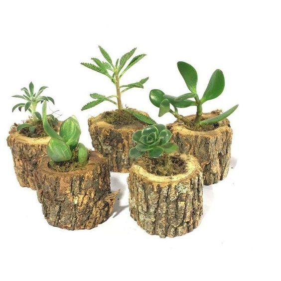 Vaso de madeira rústico para decoração