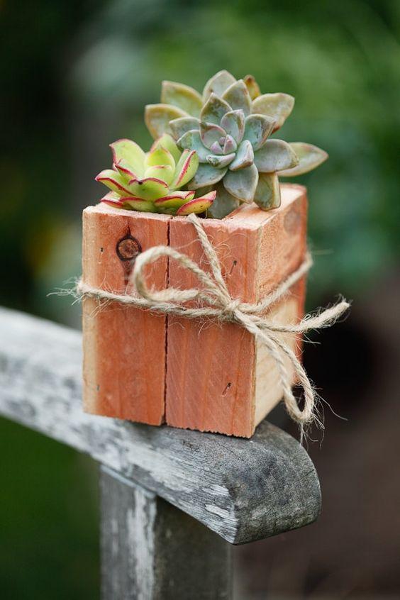 Vaso de madeira para suculentas pequenas