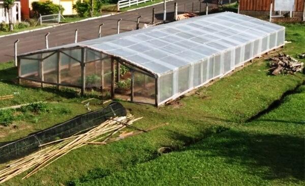 Evite solos pedregoso ou muito argiloso durante a construção do viveiro de mudas