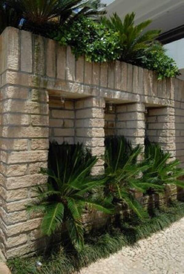 Muro de pedra grés e pequenos coqueiros complementam a jardinagem do local