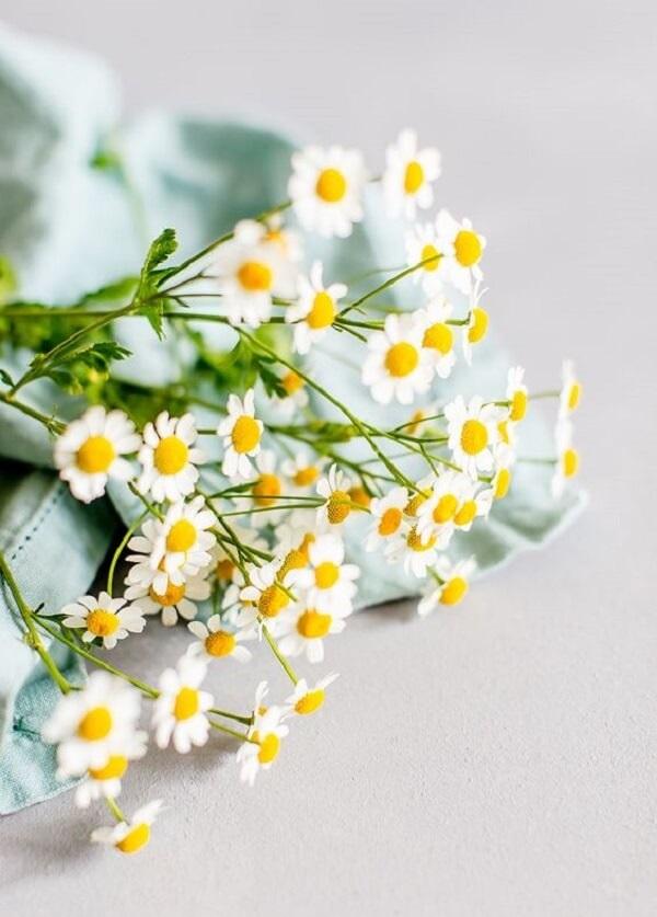 A mini margarida forma arranjos delicados