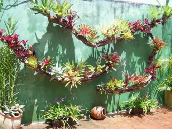 As plantas são ótimas para decoração de muro externo