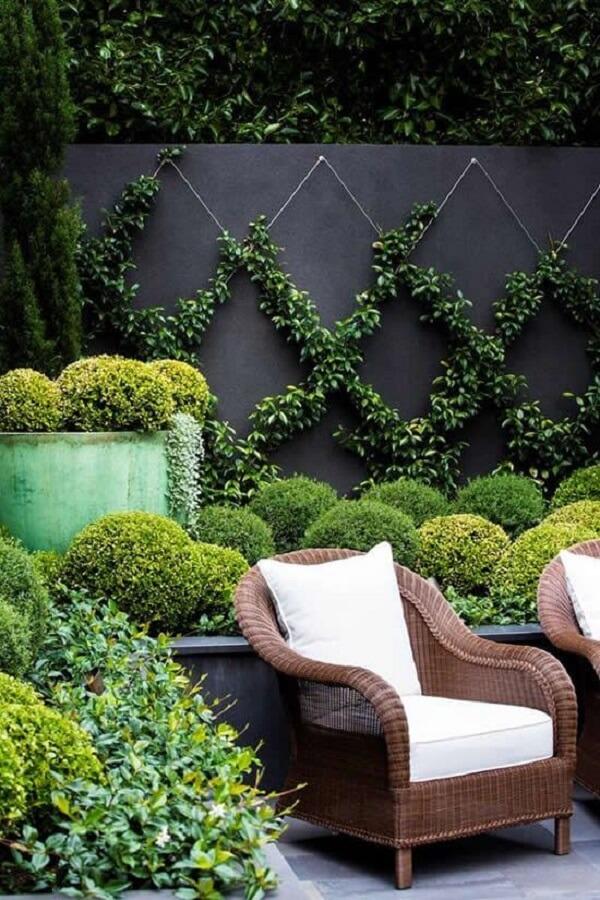 As plantas trepadeiras formam desenhos e realçam a beleza dos muros decorados