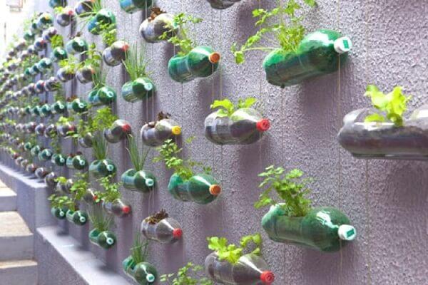 Decorar muro chapiscado com garrafas PET e plantas