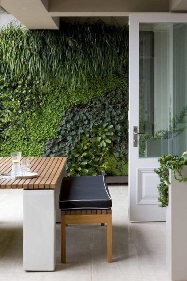 Muro de quintal com diferentes espécies de plantas