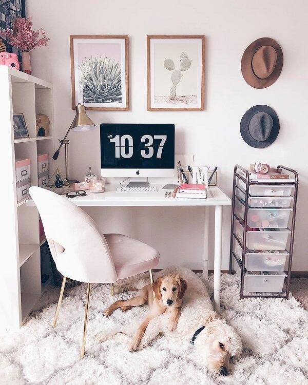 Ninguém resiste ao conforto do tapete shaggy, inclusive os animais