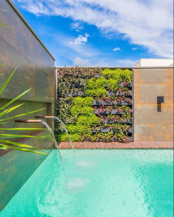 Muro de pedras e plantas por dentro de casa