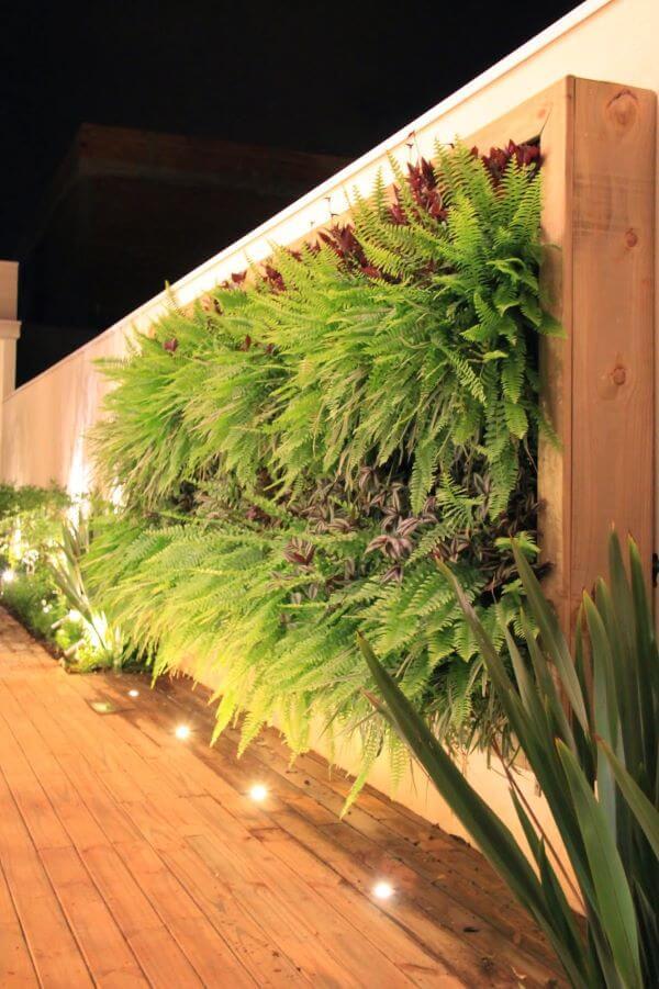 Muros bonitos com plantas e estrutura de madeira
