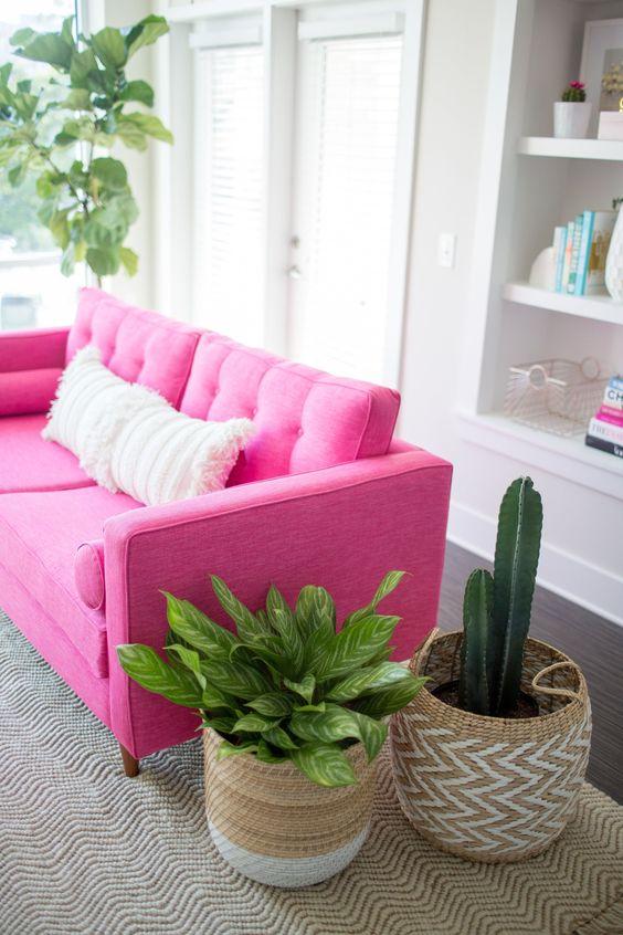 Sofá rosa pink com plantas na decoração