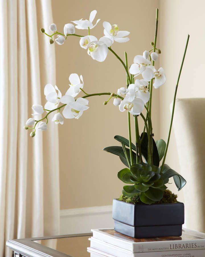 Vaso para orquídea branca