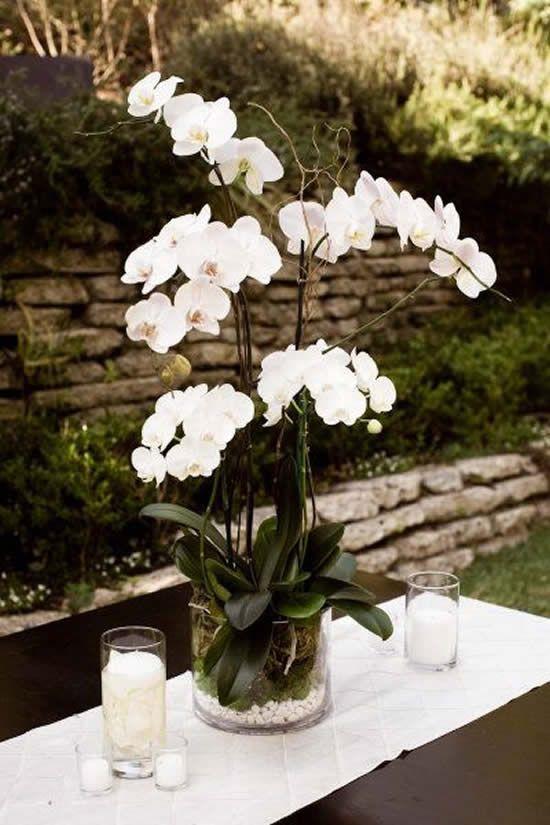 Vaso de orquídea de vidro