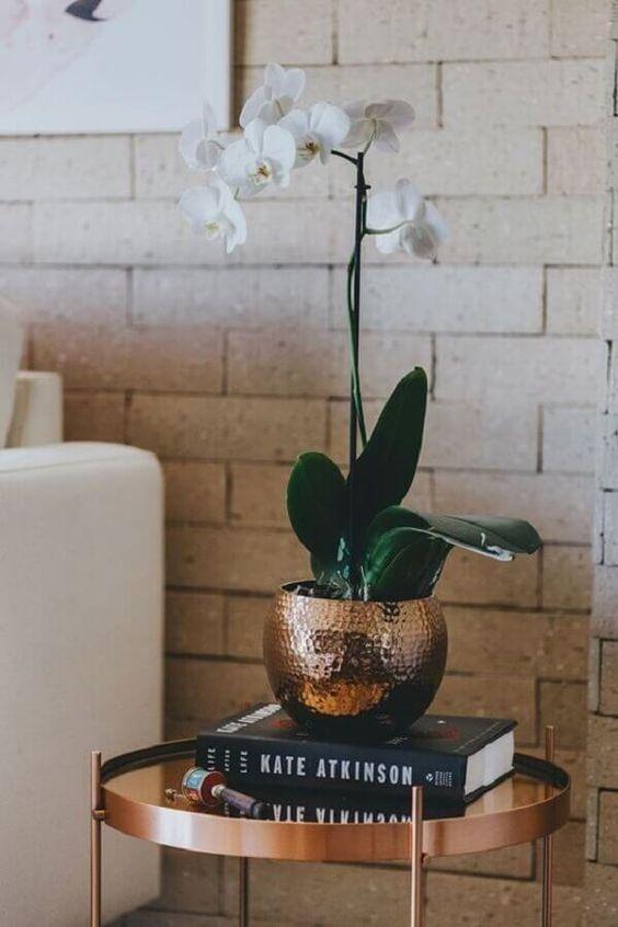 Vaso cobre para orquídea