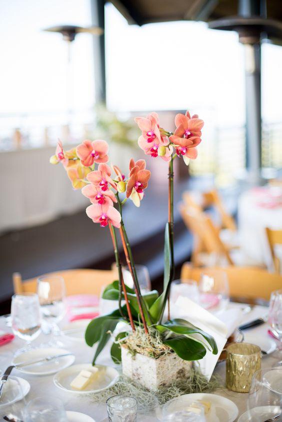 Mesa de jantar decorada com vaso de orquídea