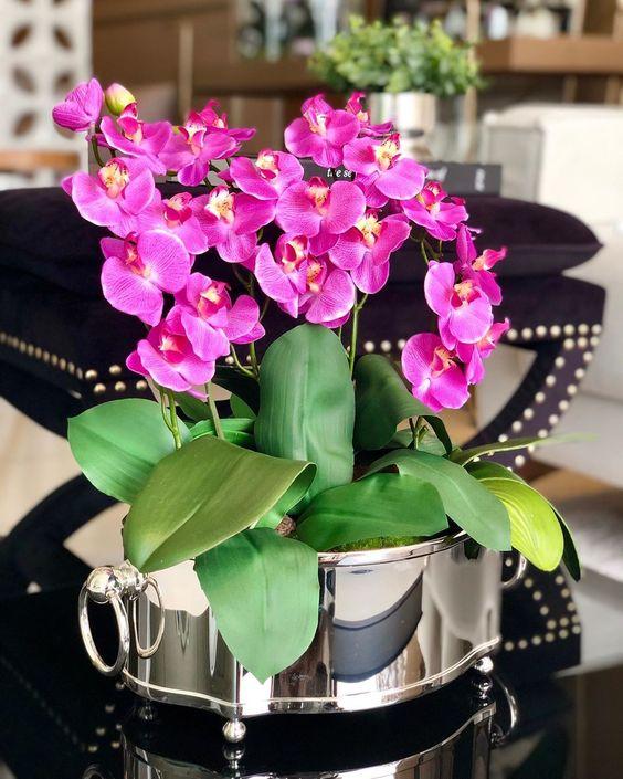 Vaso para orquídea pink