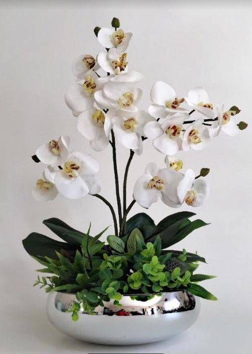 Vaso prateado de orquídea