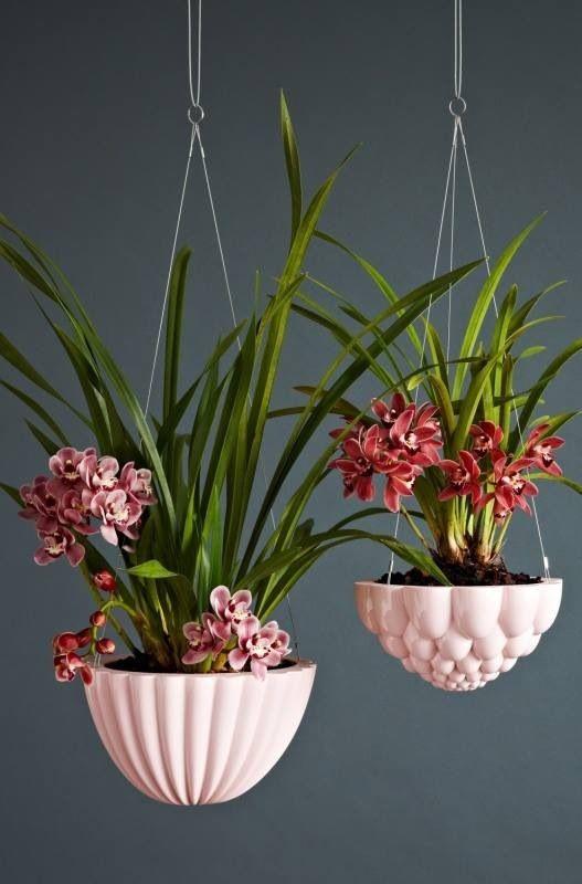Vaso suspenso para orquídeas