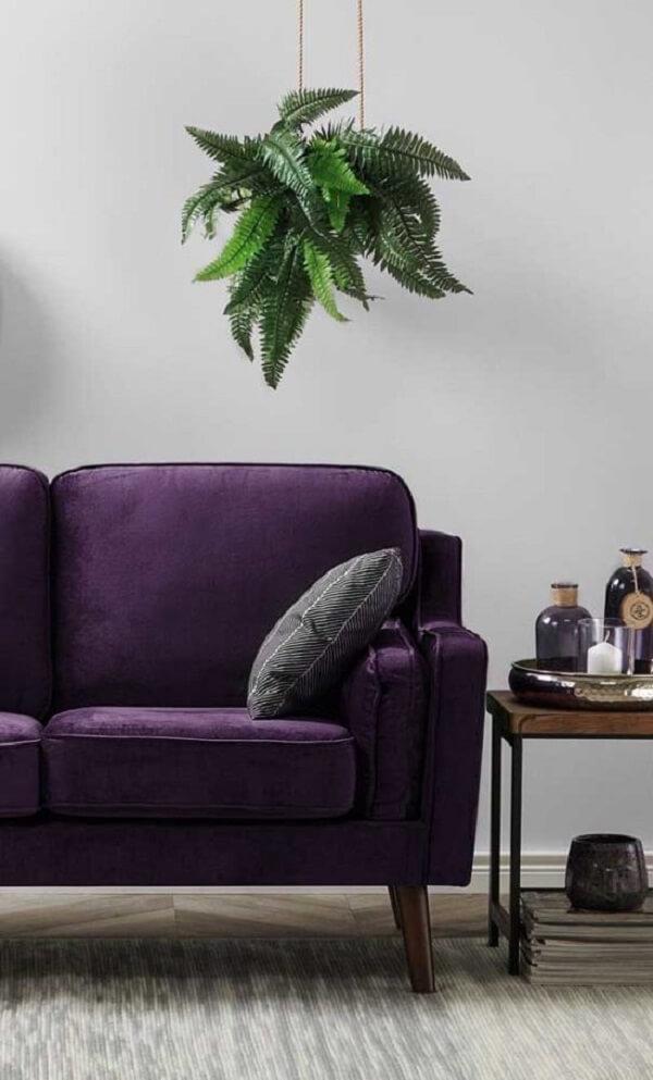 O verde das plantas traz um contraste interessante para o sofá roxo