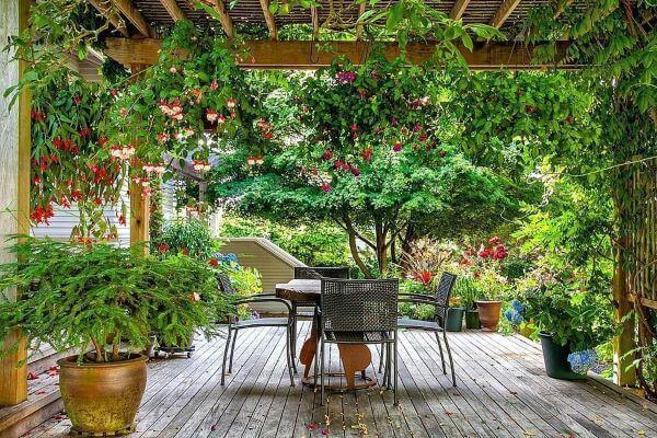 Pergolados no jardim ficam lindos decorados com flores