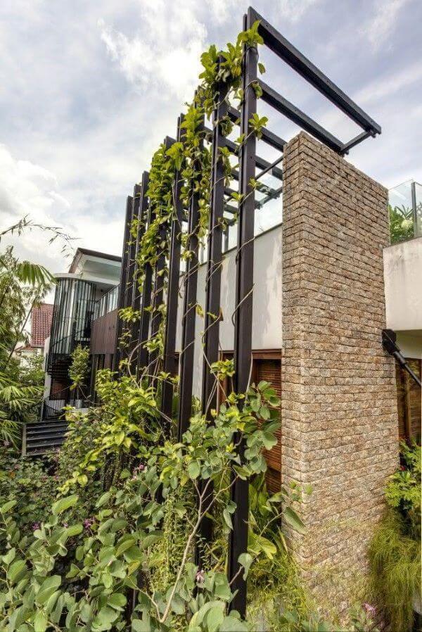 Use trepadeiras na fachada com pergolado