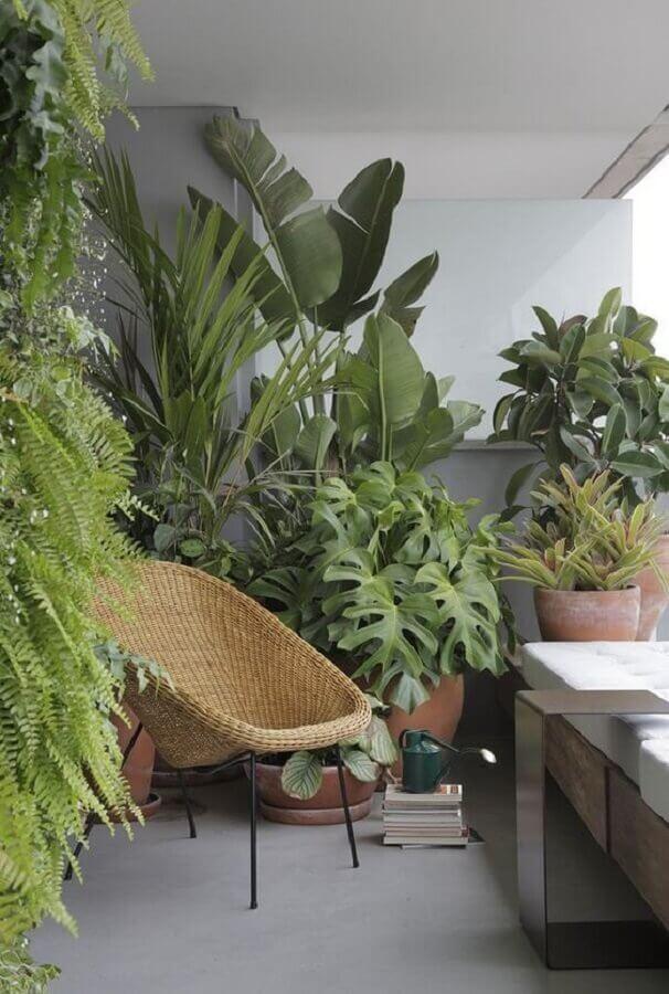 poltrona de vime para varanda decorada com vasos de plantas Foto Arkpad