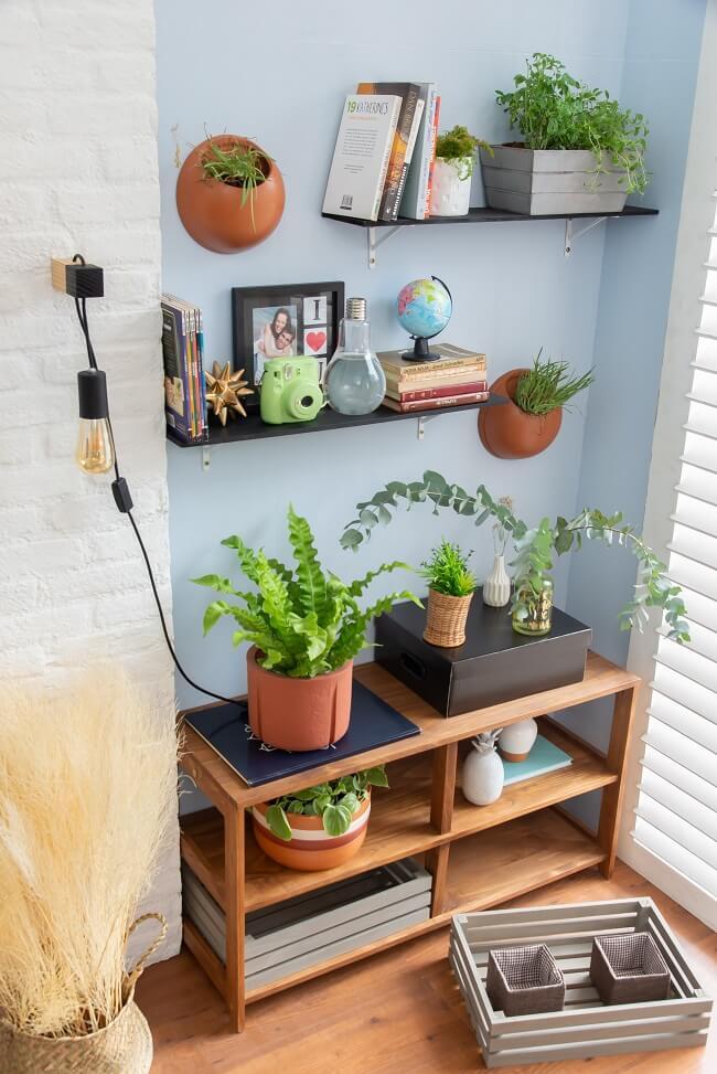 As plantinhas decoram e trazem uma cara nova à sua sala gastando zero ou pouco dinheir