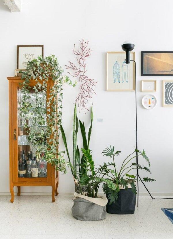 Cristaleira rústica pequena e vasos de plantas decoram o ambiente da casa