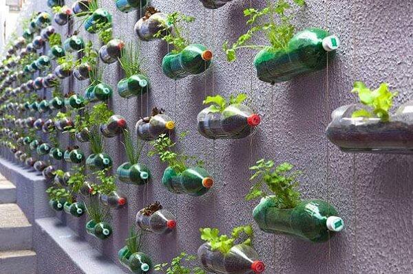 Todo o muro foi preenchido com a horta vertical com garrafa pet