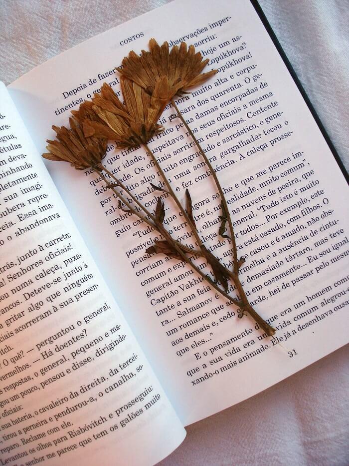 As pétalas de flores podem ficar mais conservadas a partir da técnica de prensagem em papel. Fonte: Blog Giuliana Flores