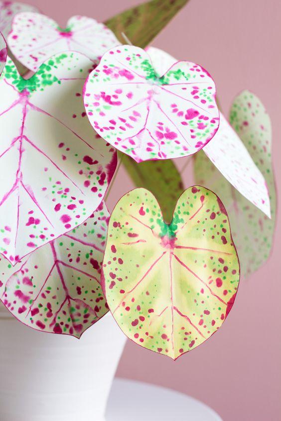 Planta caladium de papel para decorar dentro de casa