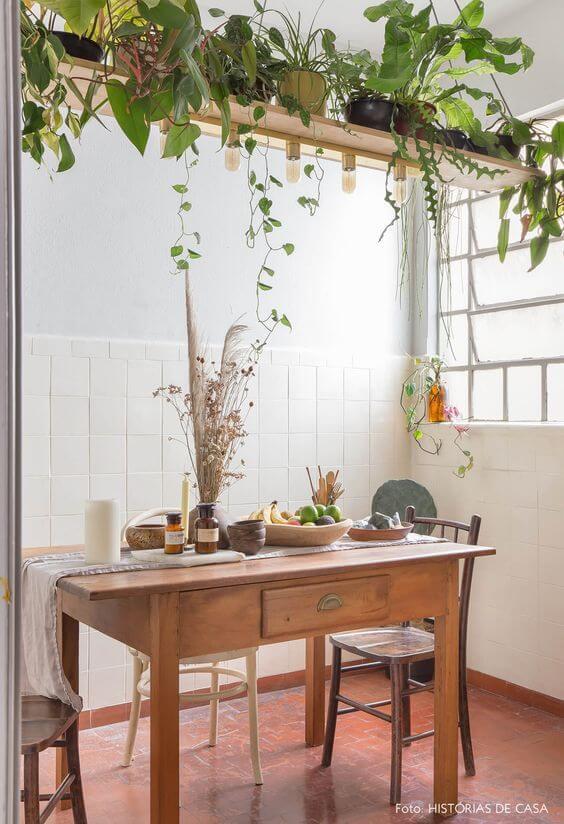 Prateleira rustica com plantas no teto