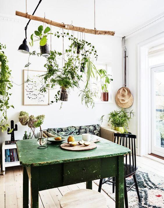 Prateleira rustica de galho com plantas