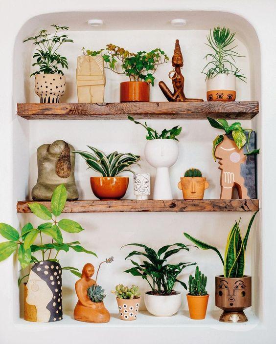 Prateleira rustica para vasos de plantas charmosos