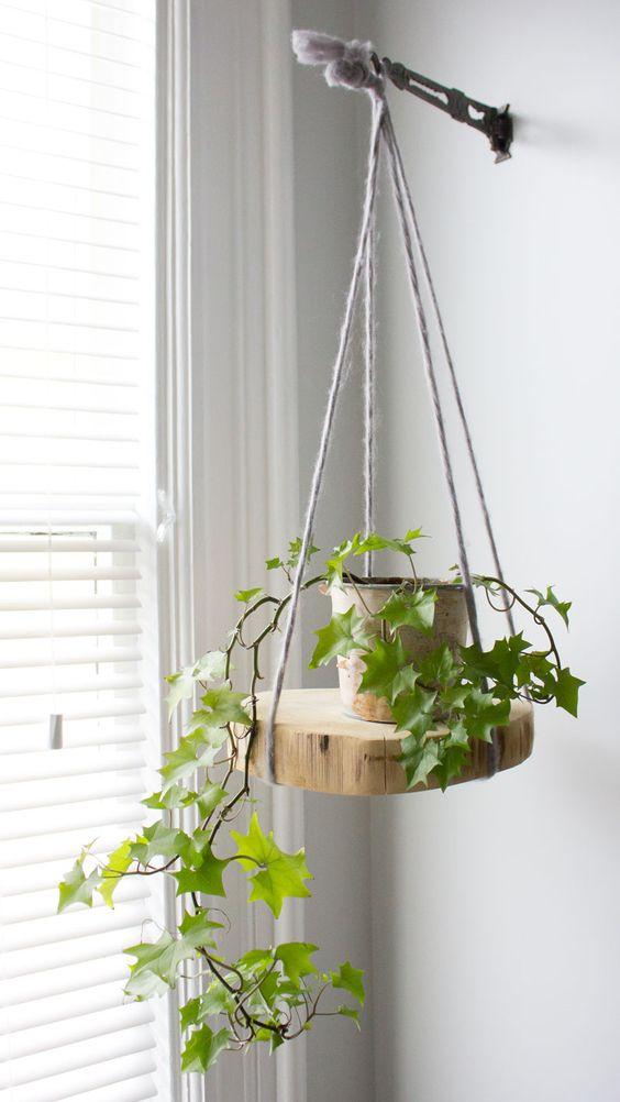 Prateleira rustica suspensa para plantas