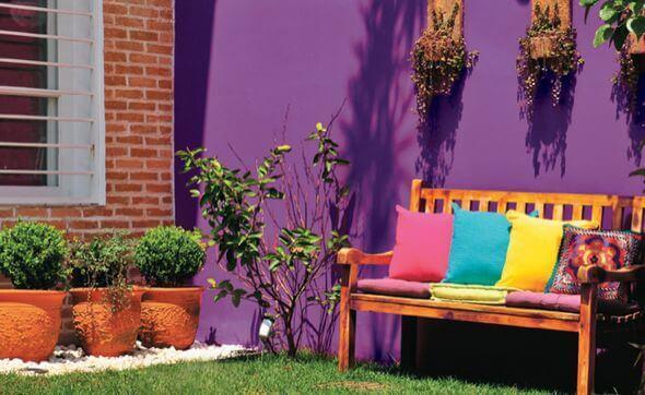 Pinte o quintal com cores lindas e vibrantes, como roxo e amarelo