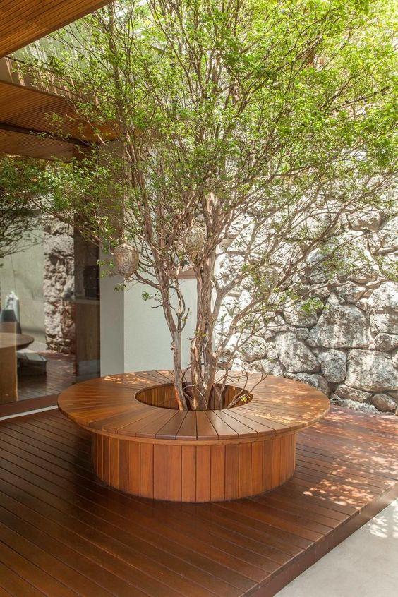 Banco de jardim de madeira com plantas