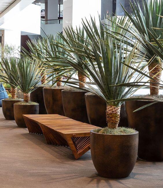 Banco de jardim de madeira com vaso de plantas