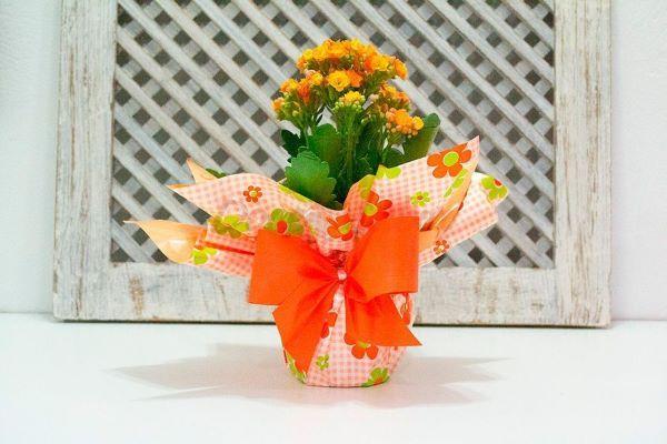 Vaso de calandiva laranja
