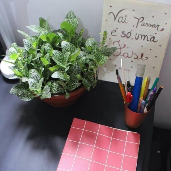 Escritório com fitônia decorando a mesa