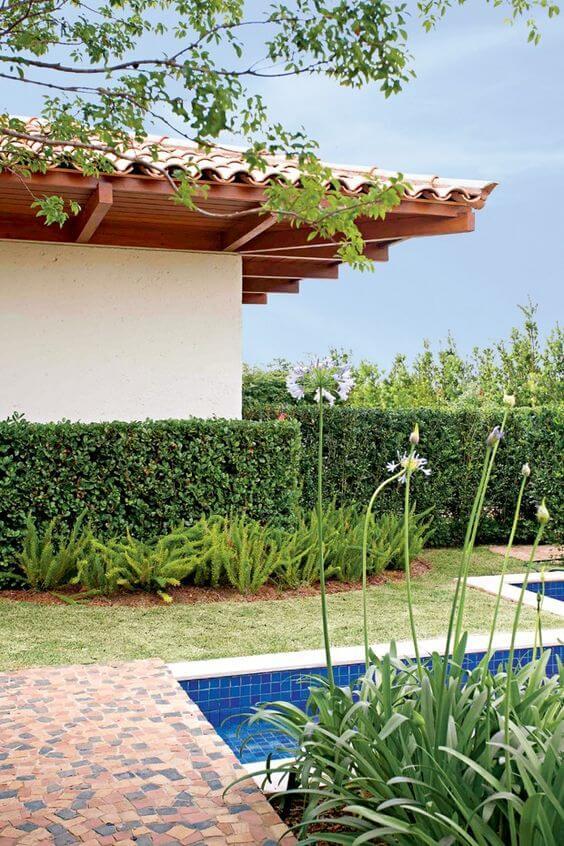 Ideias de jardim com cerca viva na área da piscina