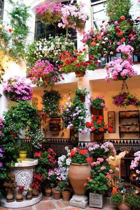 Ideias para jardim cheio de flores coloridas e vasos suspensos