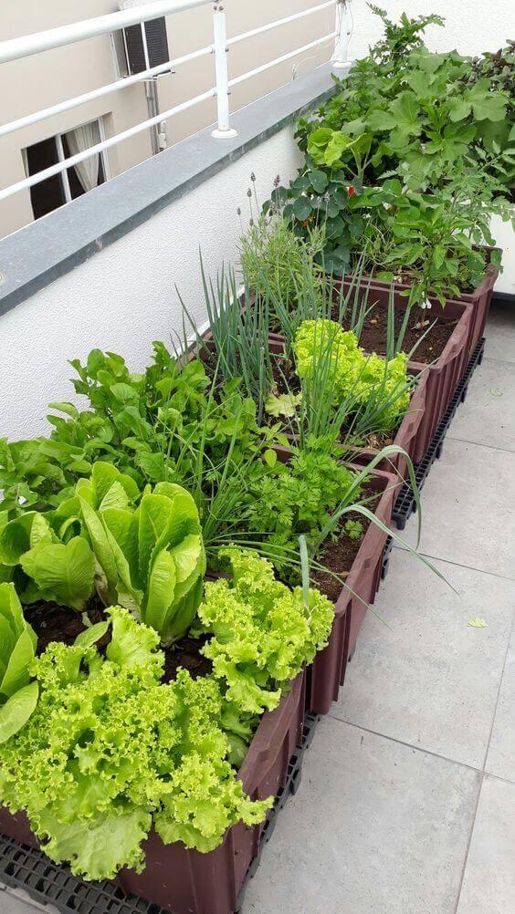 Ideias para jardim com horta