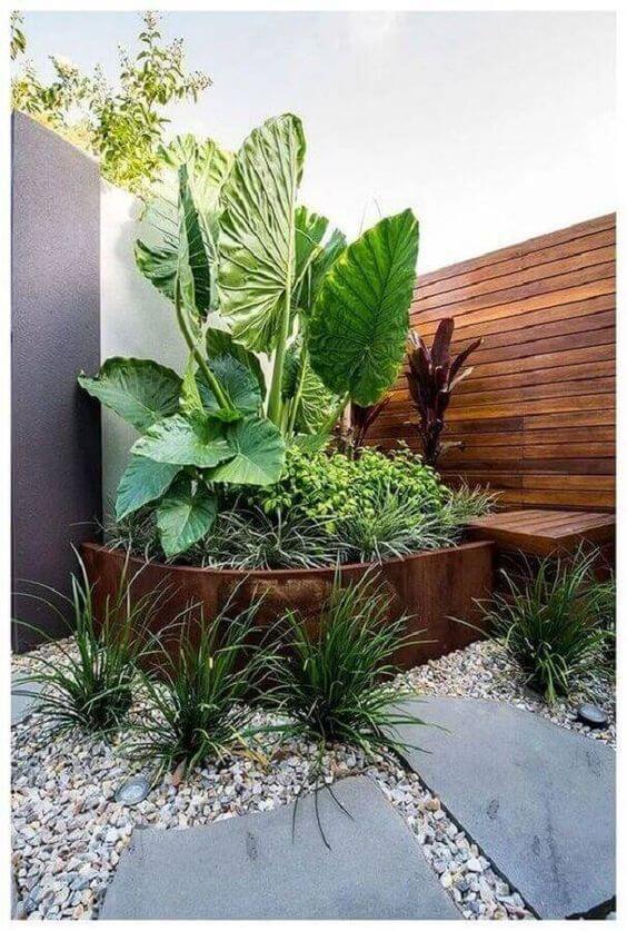 Ideias para jardim com plantas grandes e que gostam do sol