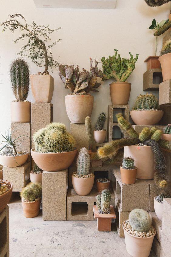 Ideias para jardim com tijolo e cactos