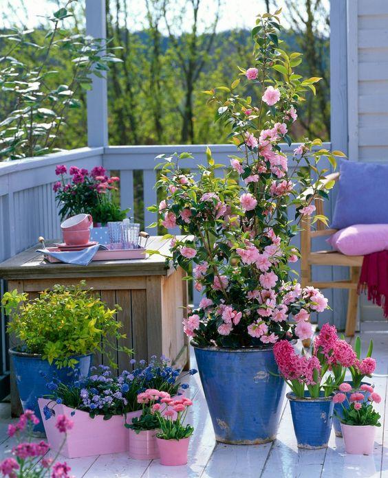 Ideias para jardim pequeno e simples