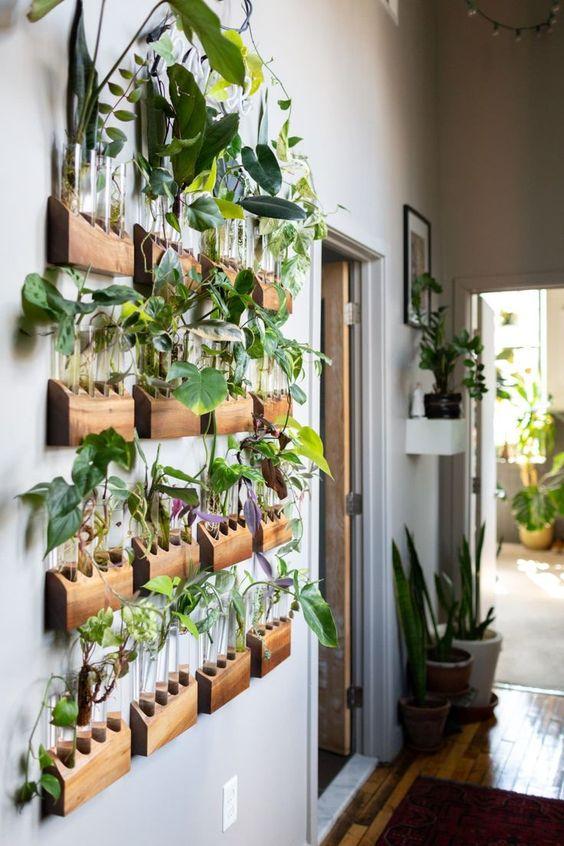 Ideias para jardim vertical em apartamentos