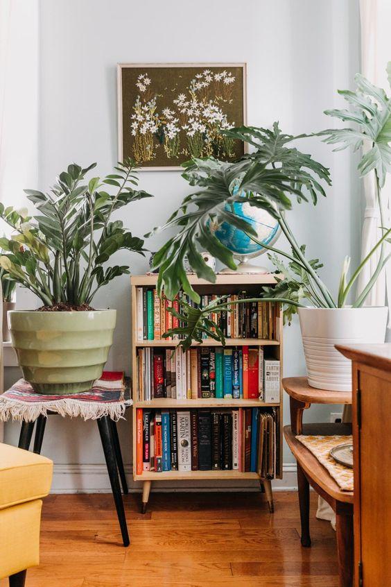 Mini estante para livros na sala de estar decorada com plantas