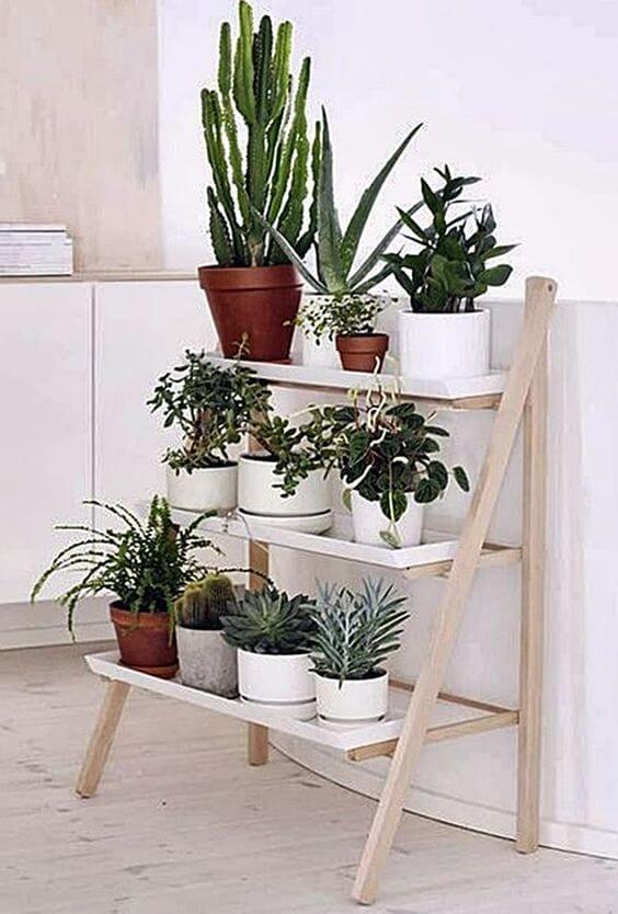 Mini estante para plantas