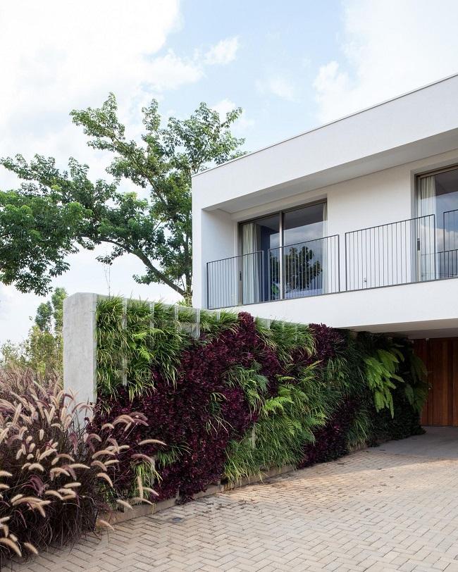 Revestimento para muro externo de concreto com aberturas que permitem a criação de um lindo jardim vertical. Projeto de Consuelo Jorge