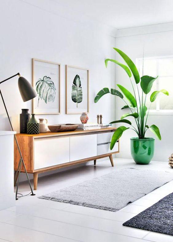 Sala com rack rustico e vaso verde